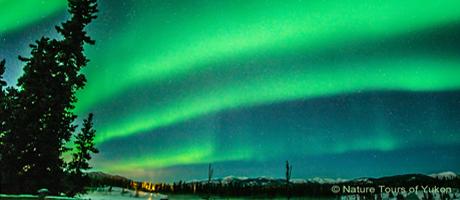 L'Aurore Boréal Yukonnaise Canada