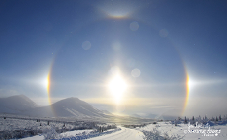 Arctic Circle Tour - Canadian Signature Experience - Nature Tours of Yukon