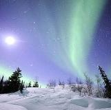 Northern Lights Yukon. Aurora viewing.