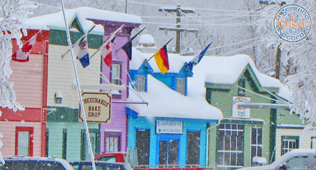 dawson city - Arctic Circle Tour- winter tours yukon