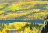 autumn colours and northern lights in Yukon