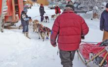Pelly Crossing check point - Yukon Quest
