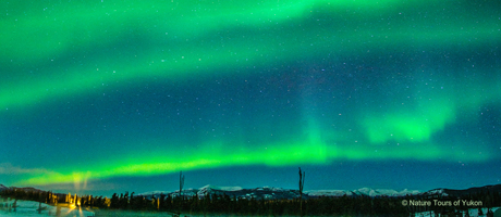 Nordlichter in Yukon, Kanada Nature Tours of Yukon
