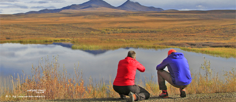 Arctic Explorer, a photograpy roadtrip to the Arctic with Nature Tours of Yukon