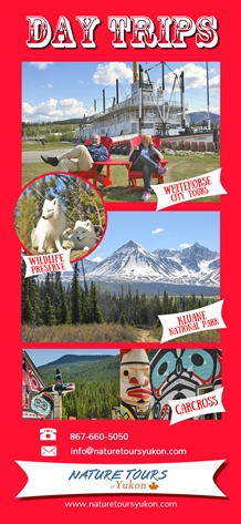 day trips whitehorse - nature tours yukon