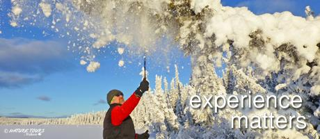 Whitehorse-yukon winter day trips