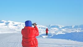 Winter wonderland in the Arctic