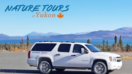 Vehicle - Nature Tours Yukon - Road tours