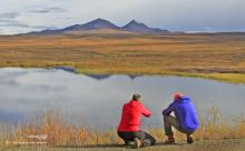 Photo safari to the Arctic