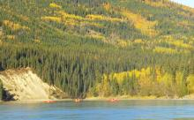 Canoe trekking on Teslin River, Yukon