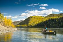 Fall colours at Yukon River